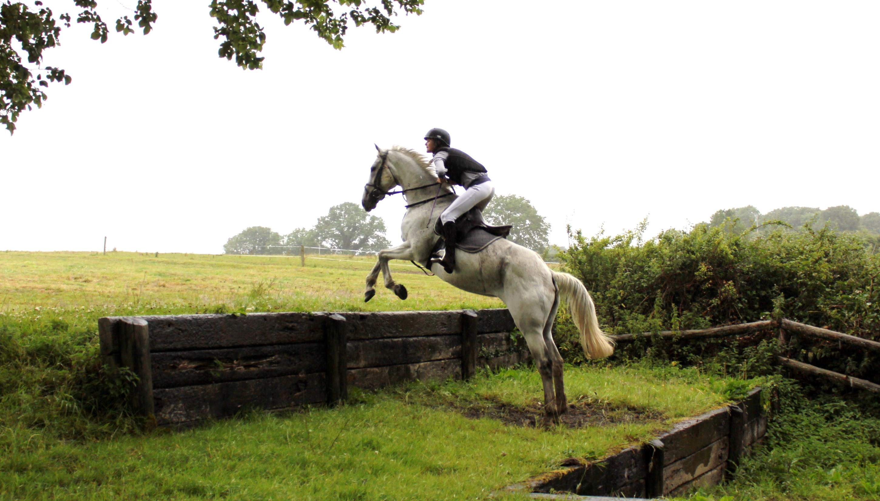 Crossogue Equestrian Jumping