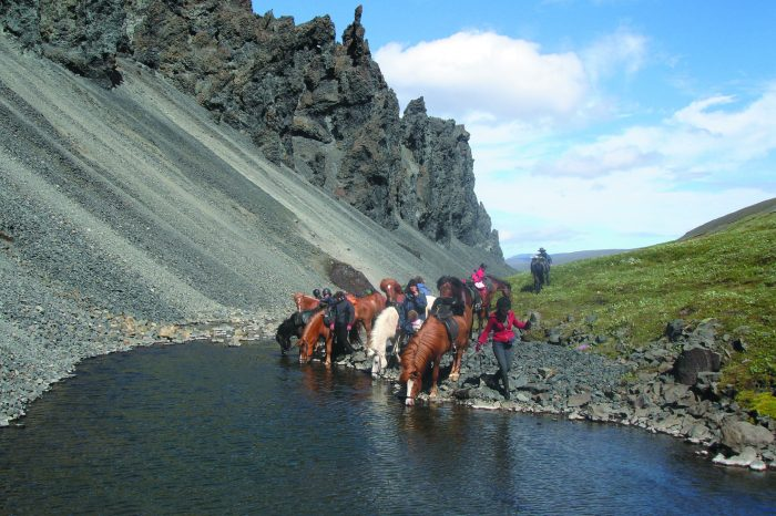 Íslandshestar Iceland Horse Riding Vacations
