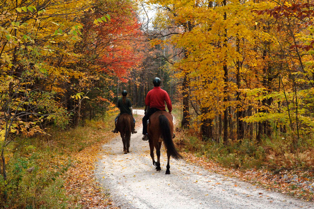 Mountain Top Inn, Vermont Horseback Riding, Autumn